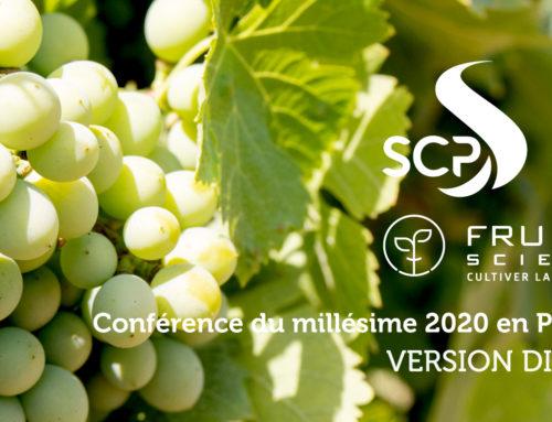 La conférence du millésime 2020 en Provence, en replay !
